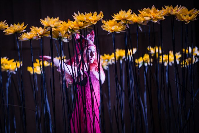THE CUNNING LITTLE VIXEN - BERGEN NASJONALE OPERA - 2013